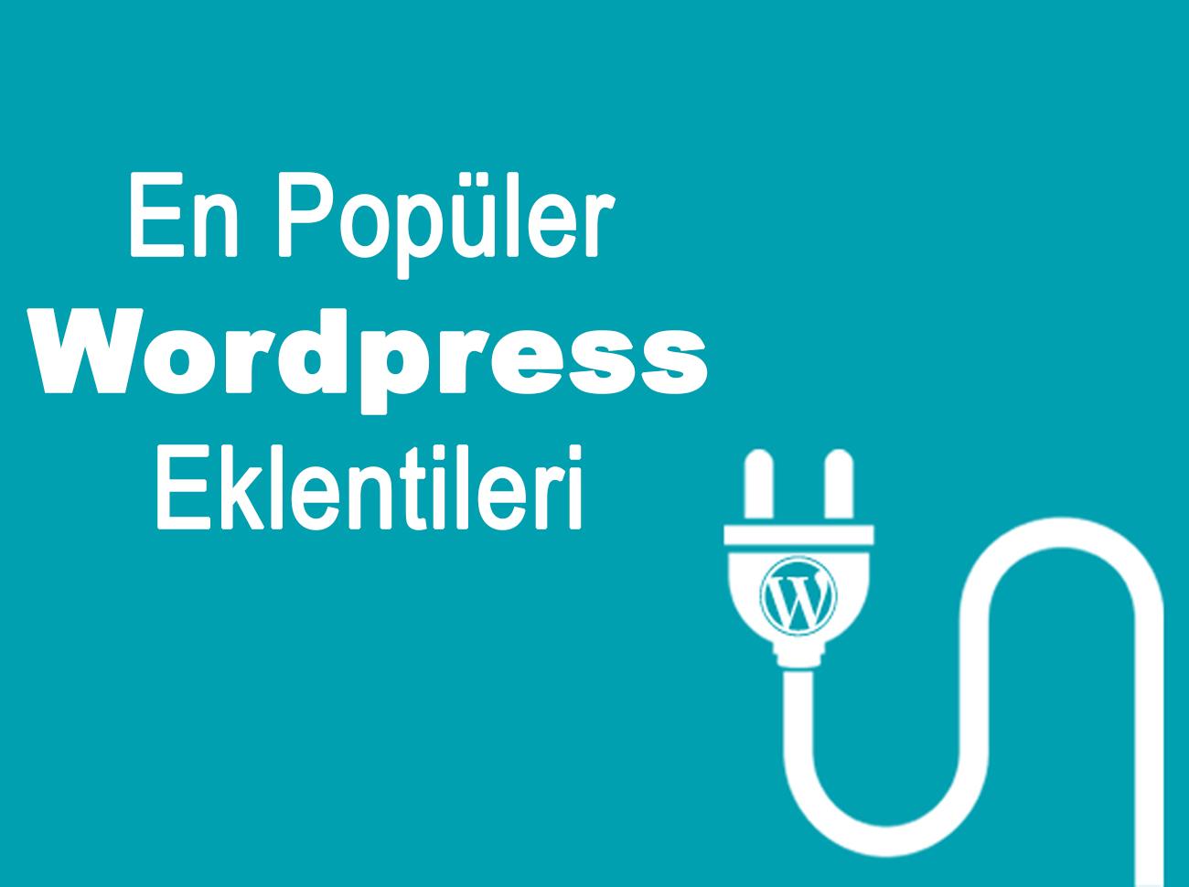 En Çok Kullanılan 10 WordPress Eklentisi