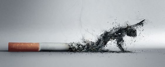Sigaranın Zararları Kamu Spotu