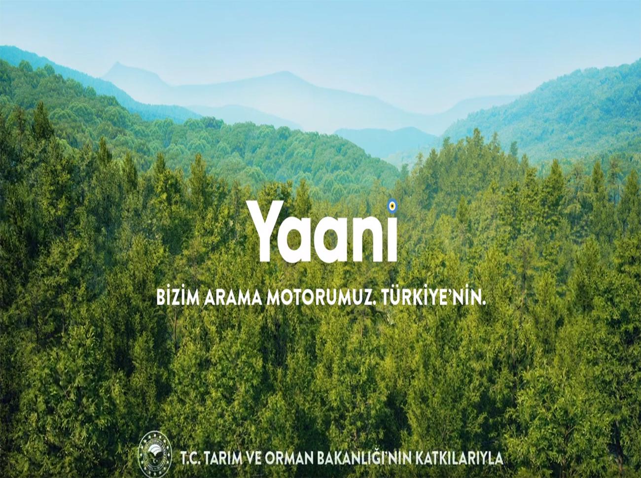 Yaani'de Yapılan Aramalar Ağaca Dönüşüyor