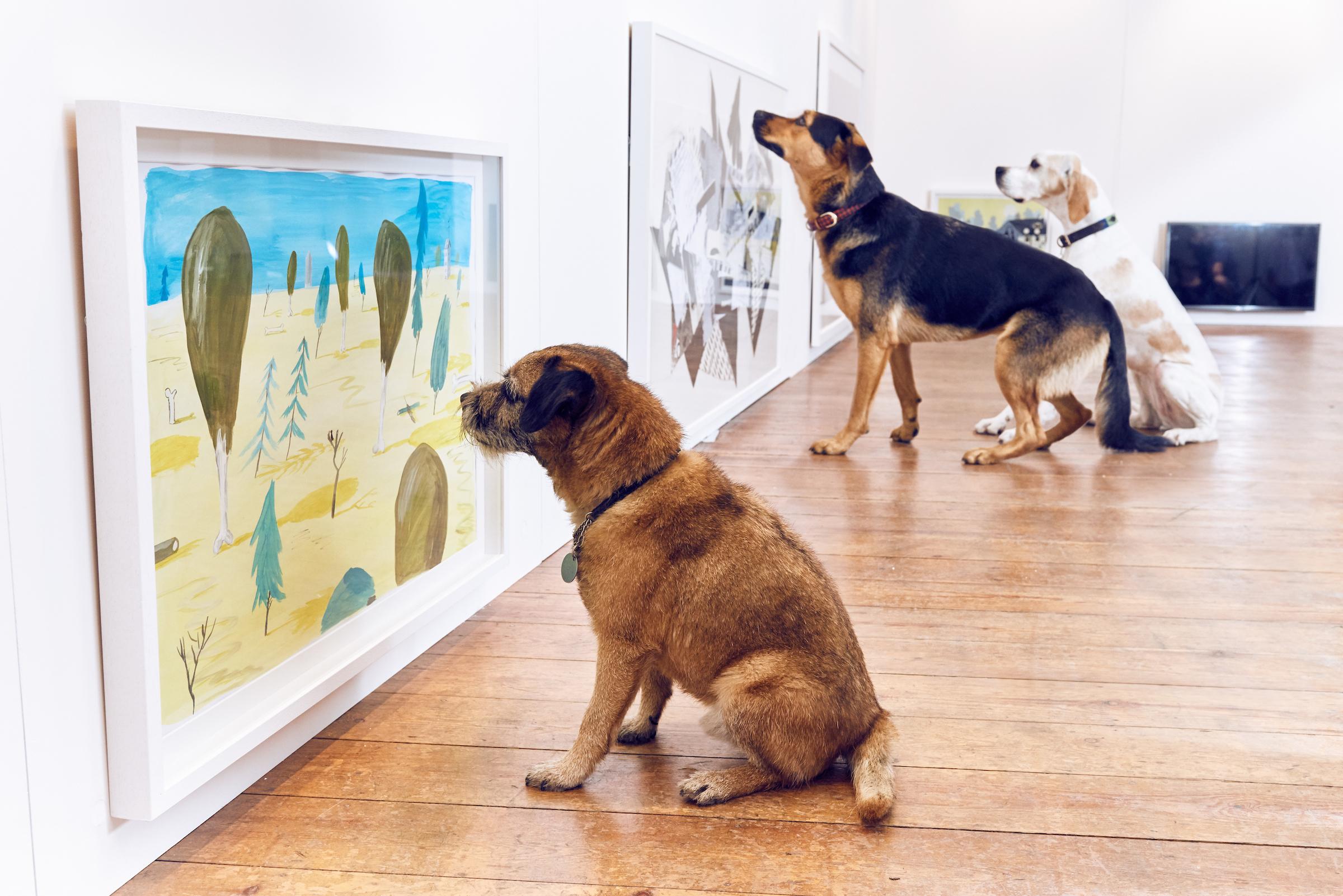 Dominic Wilcox Köpekler İçin Sergi