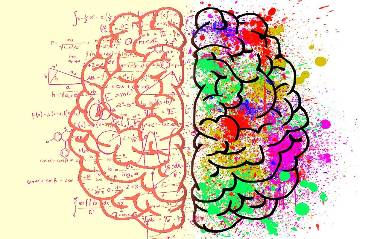 Sağ Ve Sol Beyin Özellikleri