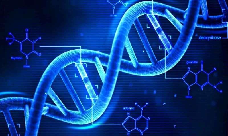 Dijital Veriler DNA