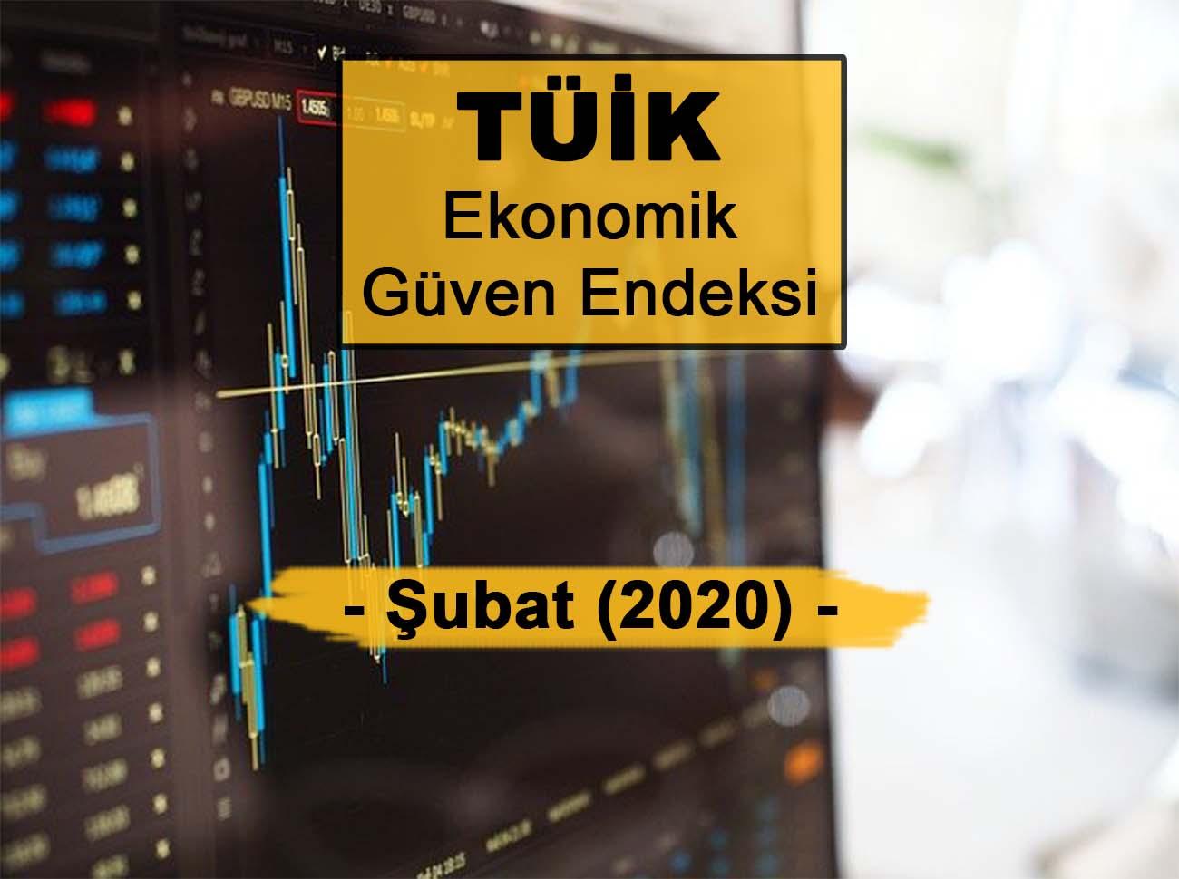 Ekonomik Güven Endeksi (Şubat 2020)