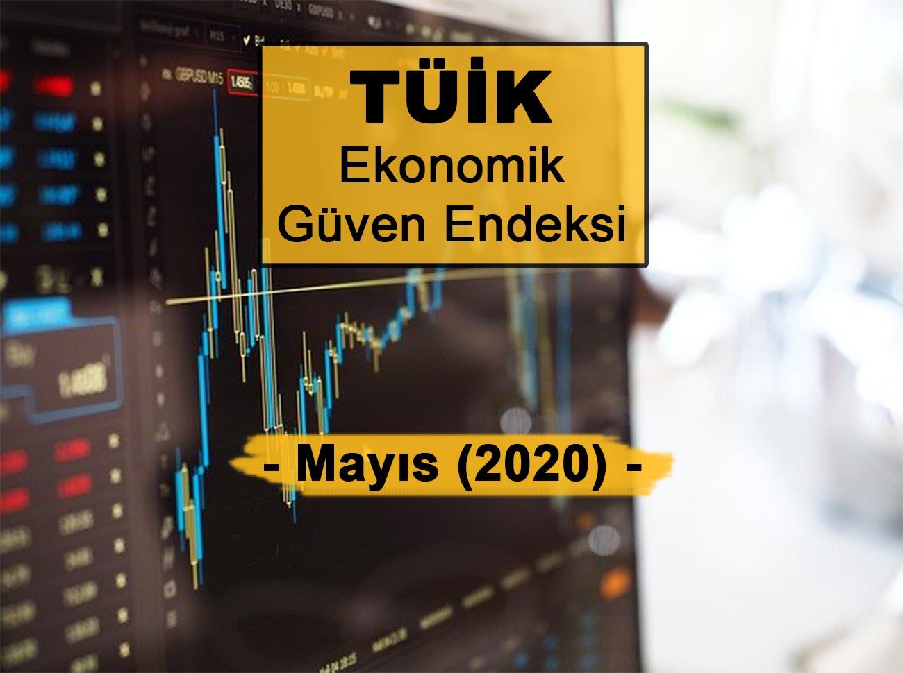 Ekonomik Güven Endeksi Mayıs 2020