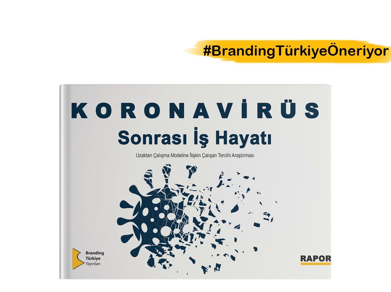 Koronavirüs Sonrası İş Hayatı Raporu - Mürsel Ferhat Sağlam & Serenay Palabıyık