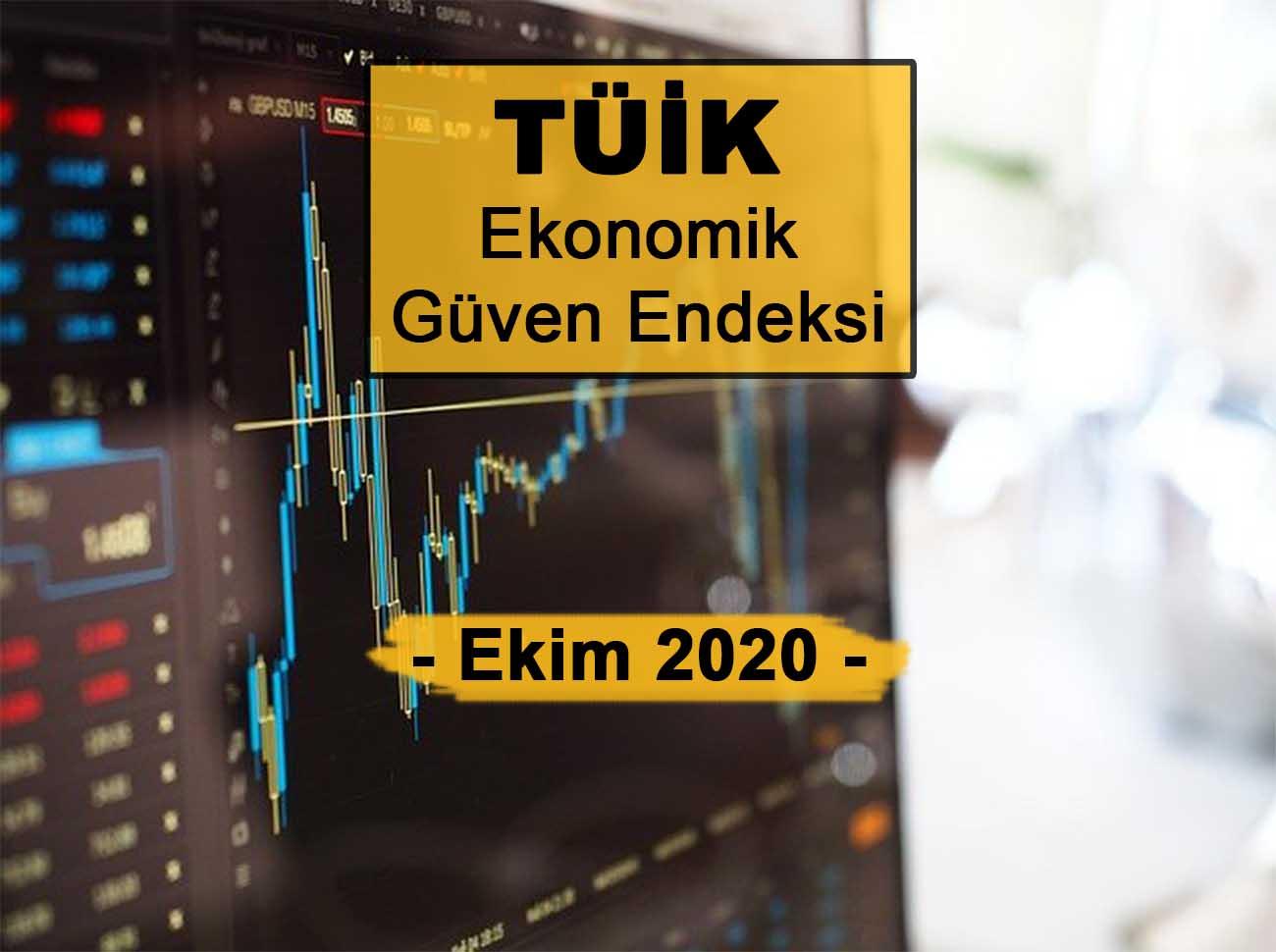 Ekonomik Güven Endeksi (Ekim 2020)