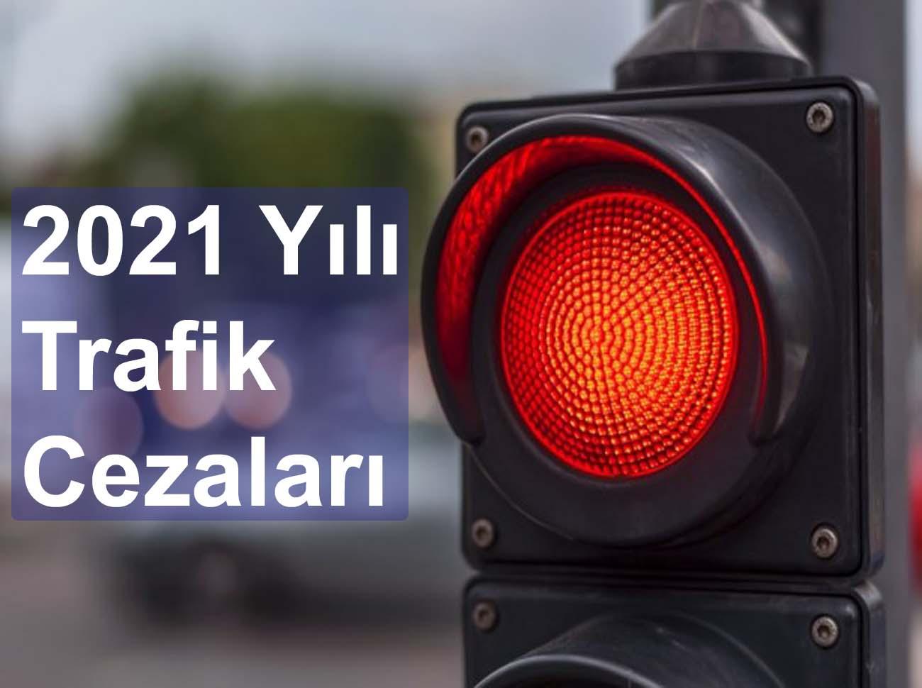 2021 Yılı Trafik Cezası