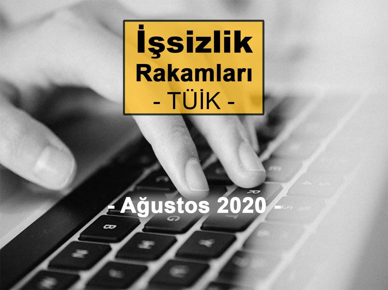 İşsizlik Rakamları (Ağustos 2020)