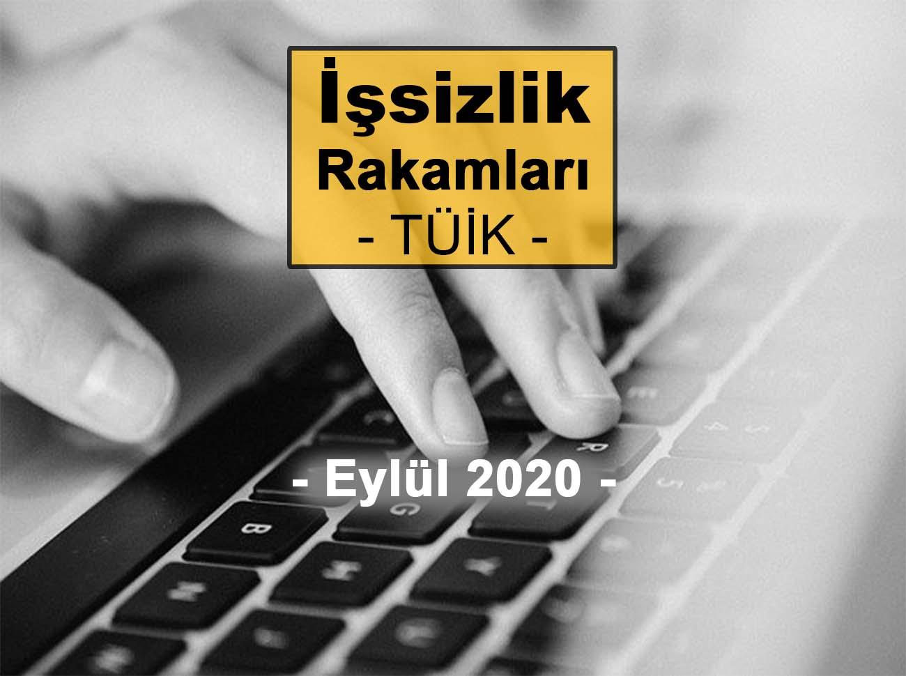 İşsizlik Rakamları (Eylül 2020)